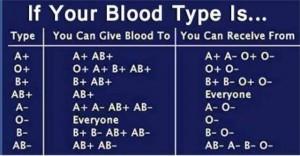 Tabella compatibilità sangue
