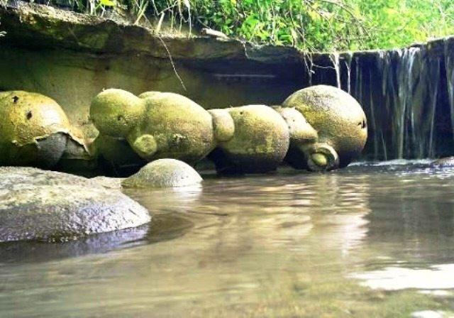 Lo straordinario fenomeno delle rocce viventi della Romania